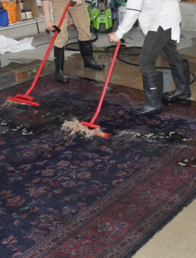Expert Water Damage Solution