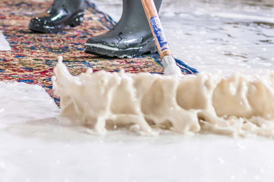 professional rug cleaning in Louisville, KY