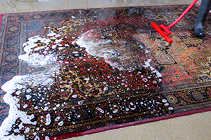 how to get white wine out of rug