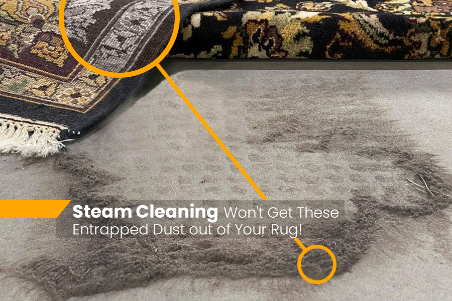 Steam Cleaners Destroy Stains and Odors As Well As Your Rug!