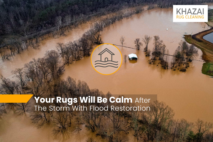 Undo The Damages To Your Rugs With Professional Flood Restoration